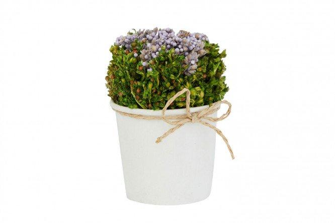 Магазин цветов в астрахани каталог товаров 9